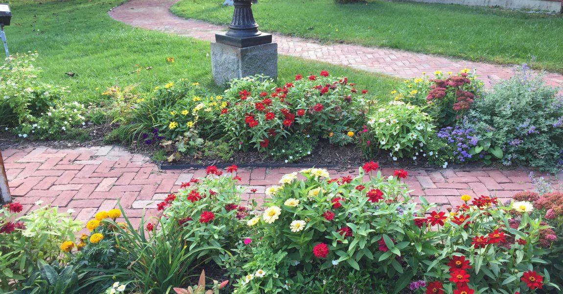 Our Fall Gardens