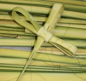 Image of folded palms